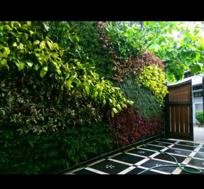 vertical garden bsd