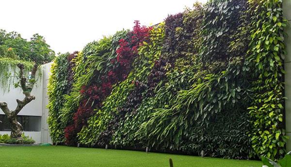 kontraktor vertical garden